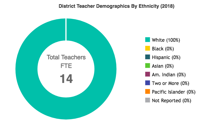 District Teacher Demographics by Ethnicity.