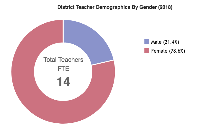 District Teacher Demographics by Gender